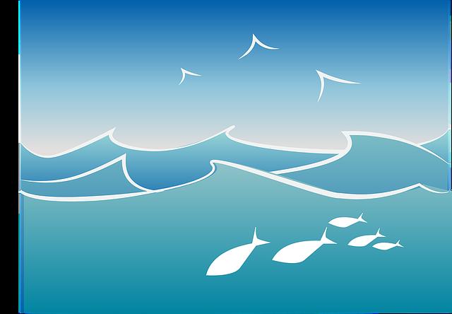Kom i form til årets ture på havet