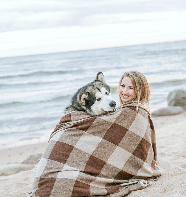Sådan tager du din hund på en sejltur