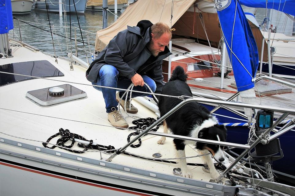 Mand og hund på sejlbåd